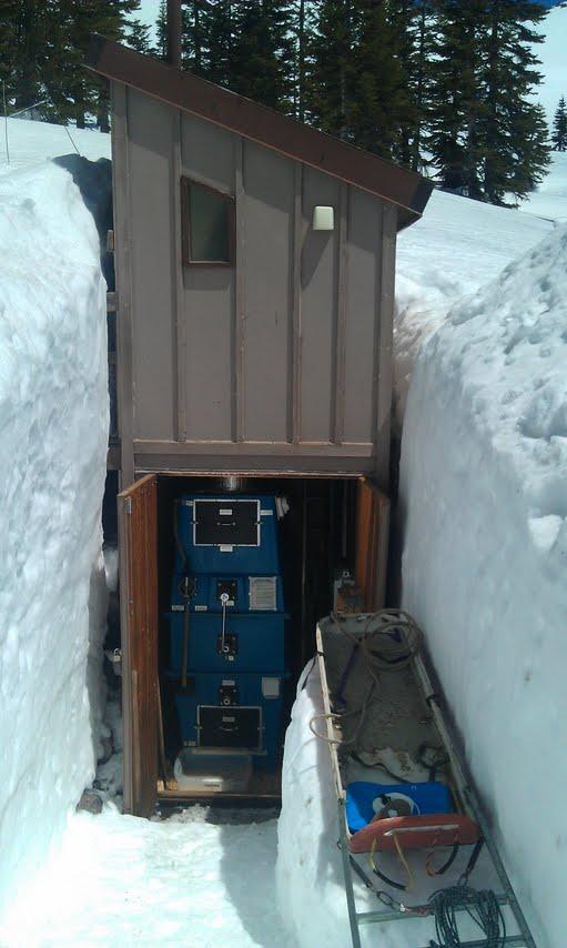 Alpine In Snow